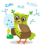 Gufo divertente che sperimenta con i prodotti chimici e la formula chimica Fotografia Stock