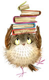 Gufo Gufo sveglio uccello della foresta dell'acquerello illustrazione di libri della scuola Uccello del fumetto illustrazione vettoriale