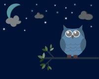 Gufo nella notte Fotografia Stock Libera da Diritti
