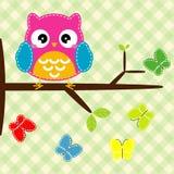 Gufo sul ramo di albero con le farfalle. Fotografia Stock Libera da Diritti