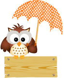 Gufo sul segno di legno con l'ombrello Fotografie Stock