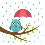 Gufo sveglio con l'ombrello Immagine Stock Libera da Diritti