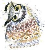 Gufo sveglio Gufo dell'acquerello Illustrazione di Owl Tee Shirt Fotografia Stock