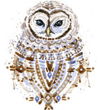 Gufo sveglio Gufo dell'acquerello Illustrazione di Owl Tee Shirt Fotografia Stock Libera da Diritti
