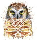 Gufo sveglio Gufo dell'acquerello Illustrazione di Owl Tee Shirt Immagini Stock