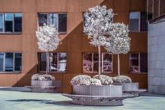 Guggenheim Бильбао Стоковое Изображение