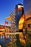 Guggenheim Museum at night in Bilbao, Spain Stock Photo