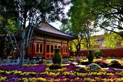 GuGong u. x28; Verbotenes City& x29; in Peking China Stockfotos