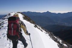 Guia da montanha na neve fotografia de stock royalty free