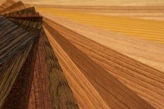 Guia das amostras da textura da paleta de cores e da madeira ilustração do vetor