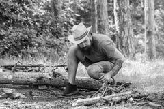 Guia final ?s fogueiras Como construir fora a fogueira Arranje os galhos das madeiras ou as varas de madeira que est?o como a fotografia de stock