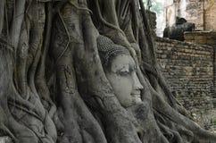 Guia para o si Ayutthaya de Phra Nakhon Imagens de Stock Royalty Free
