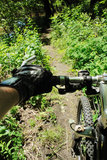 Guiador da bicicleta de fuga da montanha   Imagem de Stock