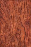 Guibourtia (wood texture) Stock Photography