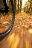guida bassa di movimento della sfuocatura della bicicletta di angolo Fotografia Stock