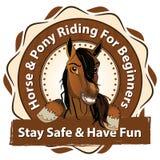 Guida del cavallino e del cavallo per i principianti illustrazione di stock