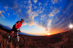 Guida del ciclista del mountain bike all'aperto Fotografia Stock