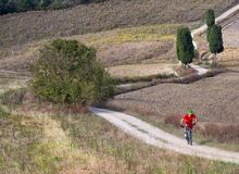 Guida del ciclista in mountain-bike attraverso il paesaggio toscano Immagini Stock Libere da Diritti