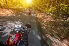 Guida del driver di motociclo nella foresta di primavera fotografia stock