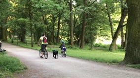 Guida del figlio e del papà sulle bici nel parco video d archivio