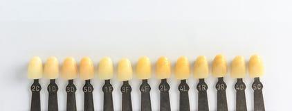 Guida dell'ombra della protesi dentaria Immagine Stock