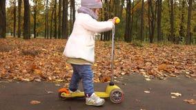 Guida della bambina sul suo motorino nel parco di autunno Bambino felice contro il fondo caduto delle foglie colpo dello steadica archivi video