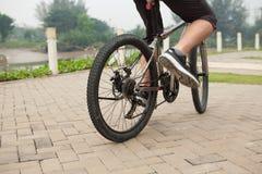 Guida della bicicletta Fotografia Stock Libera da Diritti