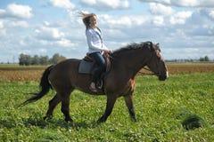 Guida della giovane donna su un cavallo marrone Fotografia Stock