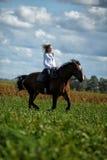 Guida della giovane donna su un cavallo marrone Immagini Stock