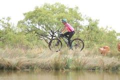 Guida della giovane donna sul bordo della diga alla corsa del mountain bike Fotografia Stock Libera da Diritti