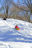 Guida della slitta dei bambini nella neve Immagini Stock Libere da Diritti