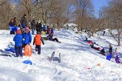 Guida della slitta dei bambini nella neve Fotografia Stock