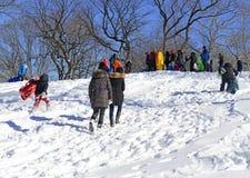 Guida della slitta dei bambini nella neve Immagine Stock
