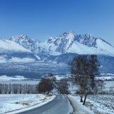 Guida della strada alle montagne nevicate Immagine Stock
