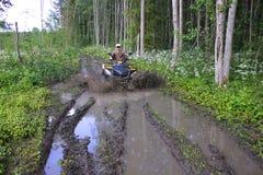 Guida di ATV nella foresta fotografia stock
