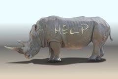 Guida di bisogno del rinoceronte Fotografia Stock Libera da Diritti