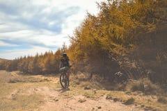 Guida di scena della montagna con un mountain bike fornito delle borse di viaggio immagine stock libera da diritti