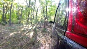 Guida di veicoli attraverso la campagna in foresta profonda stock footage