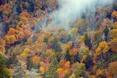 Guida di veicoli attraverso le montagne fumose Immagini Stock
