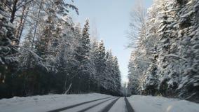 Guida di veicoli lungo il sentiero forestale nell'inverno Determinare POV sulla strada campestre nevosa Strada innevata video d archivio