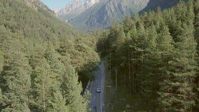 Guida di veicoli di vista aerea lungo la strada fra la foresta verde sul fondo delle montagne stock footage