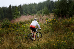 Guida maschio del ciclista attraverso il campo Fotografia Stock Libera da Diritti