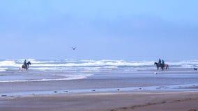 Guida posteriore del cavallo ad una spiaggia vicino a capo Meares, Oregon fotografia stock