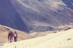 Guida sulle montagne dell'arcobaleno Fotografia Stock Libera da Diritti