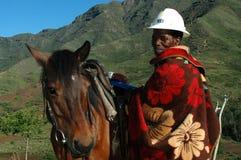 Guida Trekking del cavallino   Immagine Stock