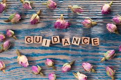 Guidance on wooden cube. The words guidance write on wooden cubes with rose bud on blue color wood background stock images