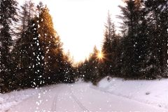 Guidando attraverso la neve fotografia stock