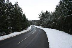 Guidando in inverno Fotografia Stock