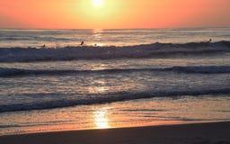 Guidando le onde al tramonto Fotografie Stock Libere da Diritti