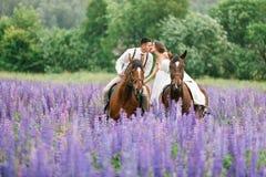Guidando le persone appena sposate sul campo fotografia stock